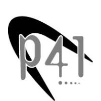P41 Industrial Services