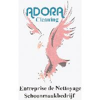 Adora Cleaning