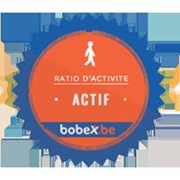 Cette entreprise a un niveau d'activité moyen sur Bobex.