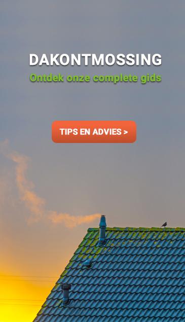 Ontmossen van daken: Ontdek onze complete gids op renovatie-gids