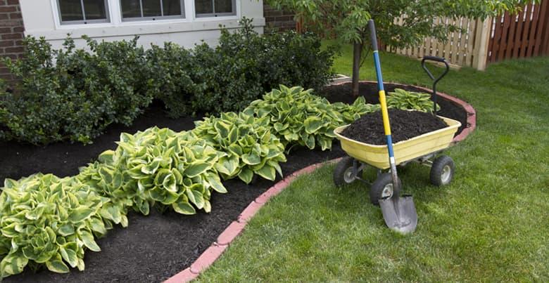 Hoe begin jet met een tuinaanleg?