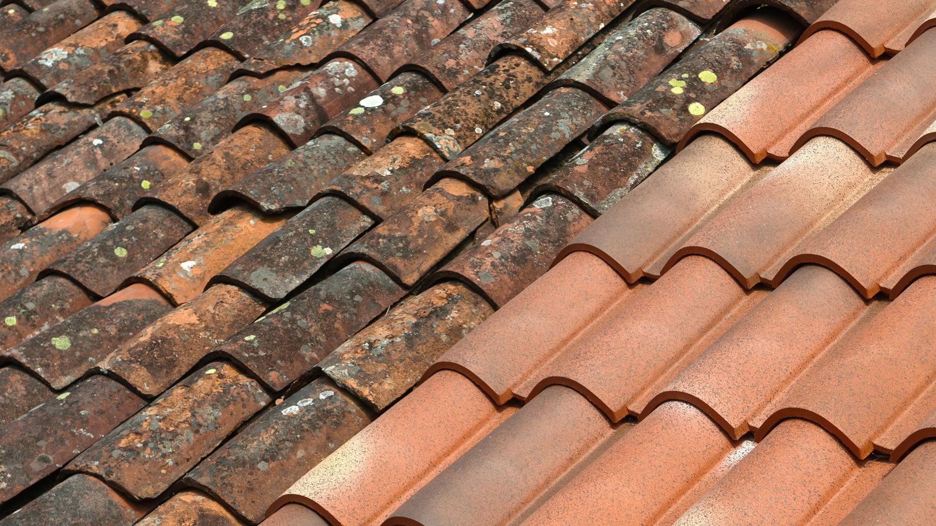 category-Ontmossen daken